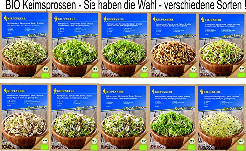 Bio Keimsprossen verschiedene Sorten Alfalfa Radies Brokkoli Weizen Rauke Linsen Zwiebel