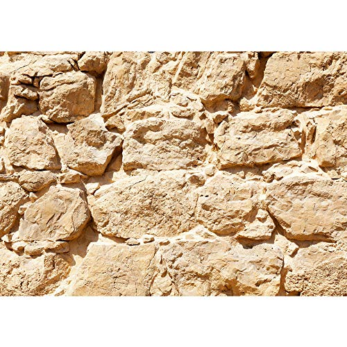Vlies Fototapete 300x210 cm PREMIUM Wand Foto Tapete Wand Bild Vliestapete - ROCK STONE WALL - Steinwand Steintapete Wand Wall Beige Felsen Große Steine - no. 025 (Große Felsen)
