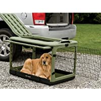 Orvis Collapsible Dog Travel Crate / Medium, Sage, Medium