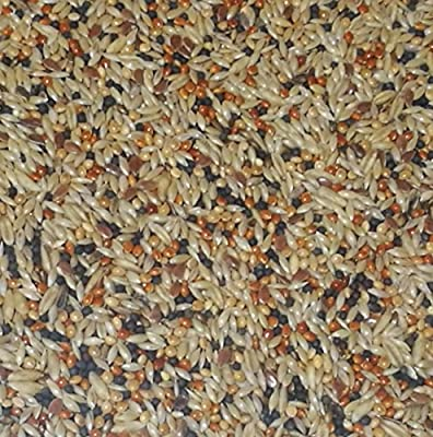 Wildlife Kingdom Classic Premium Mix Canary Seed Bird Food Finches Feed Birds from Heritage Pet Products