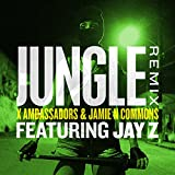 Jungle (Remix) [feat. JAY Z]