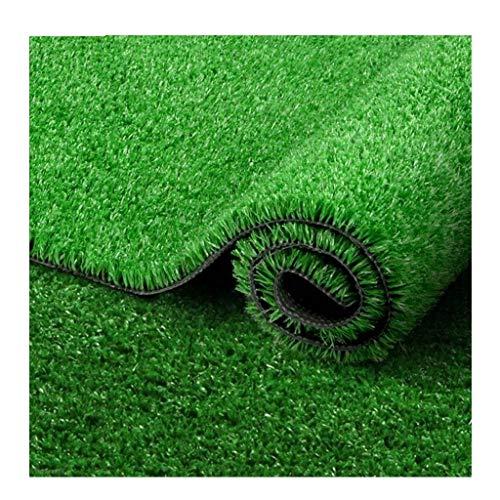 YNFNGXU Kunstrasen Rasen 20mm Stapelhöhe, verschlüsselt gefälschte Rasen natürliche realistische Garten Balkon Hund Rasen (2m x 1m) (Color : Summer Grass, Size : 2x3.5m)