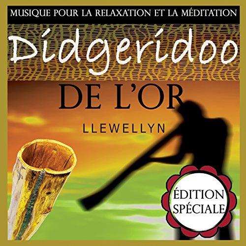 musique relaxation didgeridoo