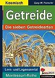 Getreide: Die sieben Getreidearten