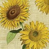 Unter der Sonne Sonnenblumen Caspari Lunch Papier Servietten 20Stück 3-lagig 33cm quadratisch