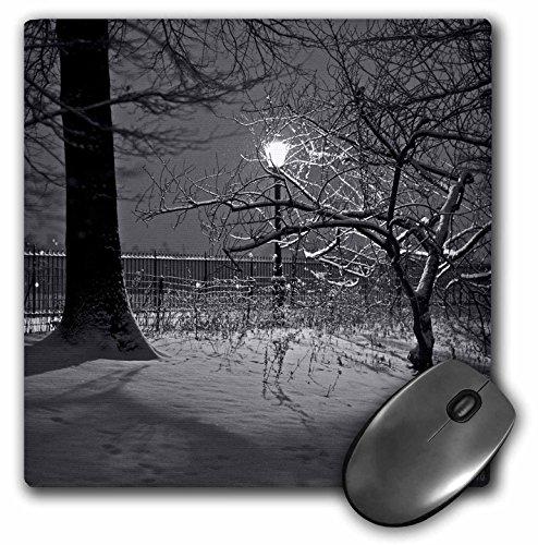 3dRose mp 10295_1 Mauspad, Motiv Schnee im Central Park Manhattan New York City, 20,3 x 20,3 cm