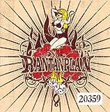 20359 [Vinyl LP]