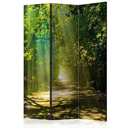 murando Raumteiler Wald Natur Foto Paravent 135x172 cm beidseitig auf Vlies-Leinwand Bedruckt Trennwand Spanische Wand Sichtschutz Raumtrenner grün c-A-0086-z-b