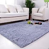 DULPLAY Korallen Teppich,Decorationindoor Teppich Europäische Einfache Sofa Seite Teppich Pflegeleicht Wohnzimmer Boden Küche Waschbar-Silber 80x200cm(31x79inch)