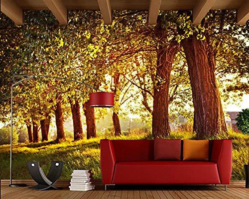 Hyzljo Sonnig Mit Bäumen Und Tapete Der Boulevardsnaturlandschaft 3D, Wohnzimmersofa Fernsehwand-Schlafzimmer-Restaurantwandgemälde-208x146cm (Halloween Immer Sonnig)
