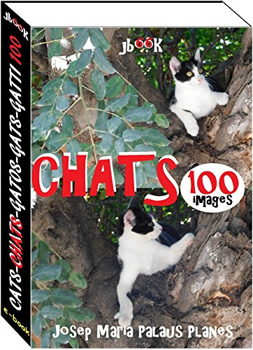 Chats (100 images)