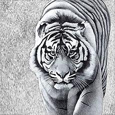 Mariani Fresken–Giclee Tiger