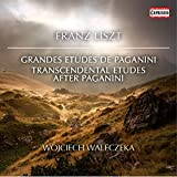 Grandes études de Paganini S. 141