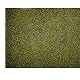 Ufermatte grün 50 cm breit / 20 m Lang Randbaumatte Teichmatte 6,49Euro / m²