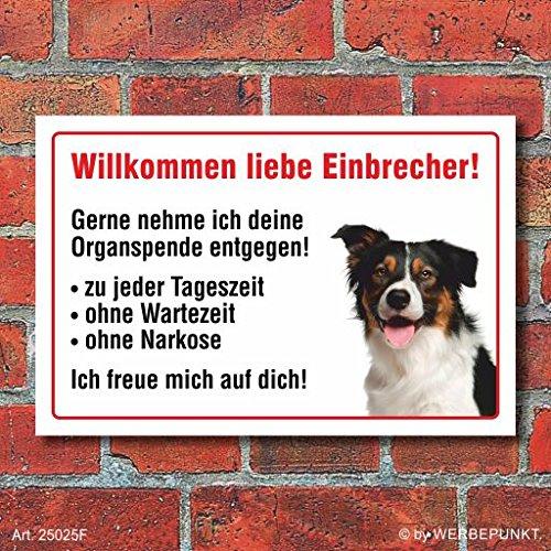 vorsicht-willkommen-border-collie-hund-schild-hinweis-3-mm-alu-verbund-motiv-2-300-x-200-mm