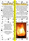 Lampada di sale Salgemma dell'Himalaya 2-3 kg - Artigianato - amazon.it