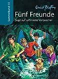 Fünf Freunde - Jagd auf raffinierte Verbrecher: Sammelband 13
