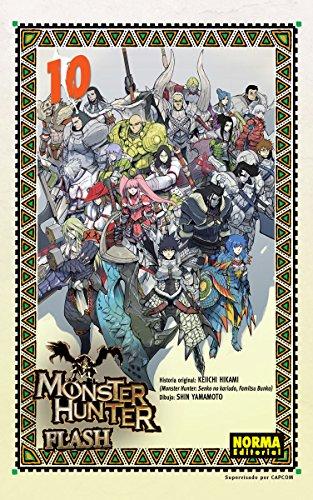 monster-hunter-flash-10