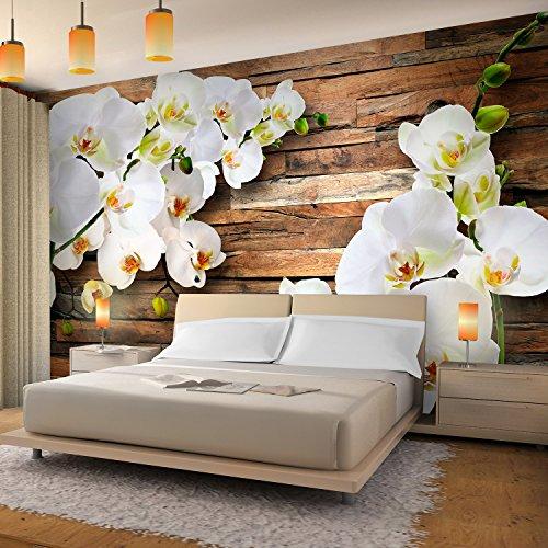 Fototapete Orchidee 352 x 250 cm - Vliestapete - Wandtapete - Vlies Phototapete - Wand - Wandbilder XXL - !!! 100% MADE IN GERMANY !!! Runa Tapete 9057011a