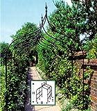 Country Garden Laubengang-Erweiterung 'Winchester'
