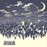 Troubled Horse: Revolution on Repeat (Audio CD)