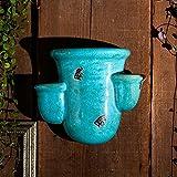 sungmor Hochwertige glasierter Keramik Töpfe, hochwertigem Mehrfarbig Aufhängen Pflanzgefäß, Wand & Zaun Decor Blumentöpfe