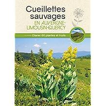 Cueillettes sauvages en Auvergne-Limousin-Quercy : 60 plantes et fruits à glaner