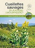 Cueillettes sauvages en Auvergne-Limousin-Quercy - 60 plantes et fruits à glaner