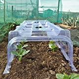 Thompson & Morgan Outdoor Garden Mini Greenhouse Growing Tunnel Plant Cloche, Protects Young Plants & Crops from Bad Weather & Reduces Impact of Pests, 2 x Greenhouse Cloches Bild