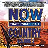Now That's What I Call Country 2