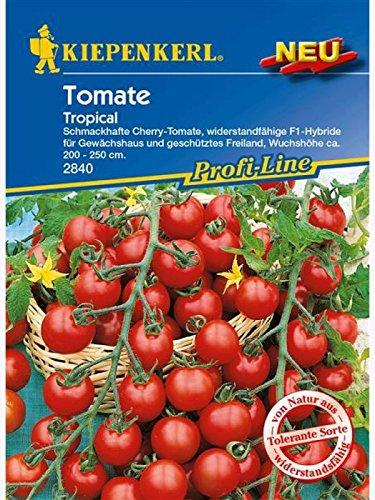 Cherry-Tomaten Tropical, Resistent