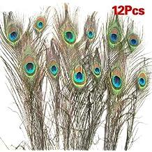 swt pcs plumas de pavo real reales para decoracin