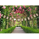 Hochzeits-Wimpelkette, Foto-Requisit–Hochzeits-Dekoration, 13verschiedene Designs verfügbar, Pappe, Just Married - Vintage Garland