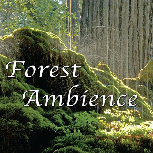 Gentle Forest Sounds W/ Rain, ...