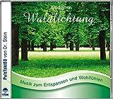 Waldlichtung: Sanfte  zum Entspannen und Wohlfühlen (Entspannungsmusik) - Arnd Stein