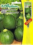 Zucchini Rondini (Portion inkl. Stecketikett)