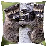 Mike and Ike - Throw Pillow Cover Case (16