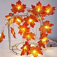 Idea Regalo - VLENIEN Acero Foglia 9.8 ft 20pcs LED Battery Powered Outdoor Luci Natale Home Decorazione(Giallo Caldo)
