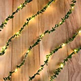 Omika Exclusive Ivy Green Leaf Garland String Lights - Vine Fairy Lights - 6.5ft 20 LED Flexible Copper Battery Powered - Perfect for Indoor, Bedroom, Wedding, Party Decorations(Warm White)