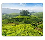 Luxlady Mousepads Concept sfondo Tea piantagioni di tè indiano Munnar Kerala India Image 36509655 Customized Art desktop laptop Gaming Mouse pad