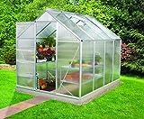 Gartenwelt Riegelsberger Gewächshaus Venus - Ausführung: 5000 HKP 6 mm Alu, Fläche: ca. 5 m², mit 1 Dachfenster, Sockel: 1,92 x 2,54 m