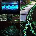 Chshe Leuchtsteine 100 Stueck künstliche Kieselstein leuchtende Kiesel Aquarium Floureszierende Pebbles Stein Garten Gehweg von Chshe bei Du und dein Garten
