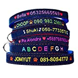 Graceful life Custom jeans dog collar embroidered with name number for Small Medium Large Dog