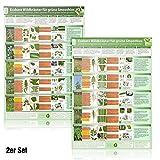 [2er Set] Essbare Wildkräuter für Grüne Smoothies (DINA4) Erkennungskarten Teil 1 und Teil 2 (2018)Schnell eindeutig erkennen, selber sammeln und mit gutem Gefühl genießen