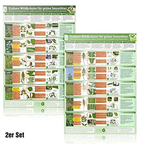 [2er Set] Essbare Wildkräuter für Grüne Smoothies (DINA4) Erkennungskarten Teil 1 und Teil 2 (2018) Schnell eindeutig erkennen, selber sammeln und mit gutem Gefühl genießen (Ein Gutes Gefühl-therapie)