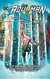 Aquaman vol.4: La muerte de un rey