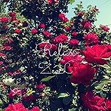 Relax [Explicit]