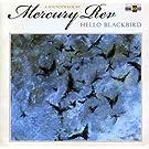 Hello Blackbird (Mercury Rev)