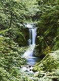 1art1 40513 Wälder - Wasserfall im Frühling 4-teilig, Fototapete Poster-Tapete (254 x 183 cm)