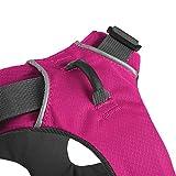Ruffwear 3050-655M Front Range Ganztags-Hundegeschirr, M, Alpenglow pink - 5